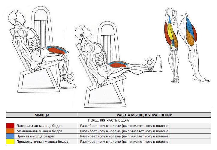 természetes rázók a lábak és a comb karcsúsításához